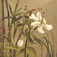 Bamboo Beuaty I Fine-Art Print
