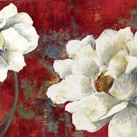 Velvet I Fine-Art Print