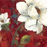 Velvet II Fine-Art Print