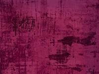 Violet Fine-Art Print
