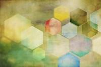 Honeycomb I Fine-Art Print