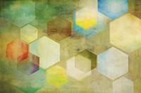 Honeycomb II Fine-Art Print
