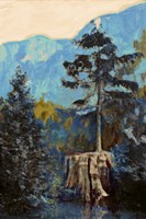 Pine on Blue Fine-Art Print