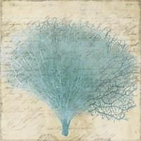 Blue Coral III Fine-Art Print