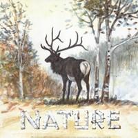 Nature Fine-Art Print