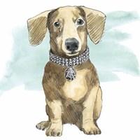 Glamour Pups IX Fine-Art Print