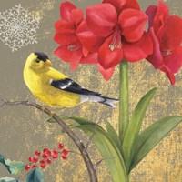 Winter Birds Goldfinch Collage Fine-Art Print