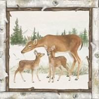 Family Cabin II Fine-Art Print