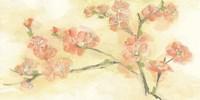 Tinted Blossoms II Fine-Art Print