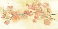 Tinted Blossoms I Fine-Art Print