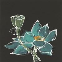 Lotus on Black I Fine-Art Print