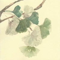 Gingko Leaves I Fine-Art Print