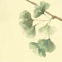 Gingko Leaves III Fine-Art Print