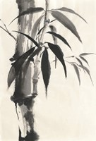 Sumi Bamboo Cream Fine-Art Print