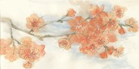 Peach Blossom III Fine-Art Print