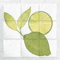 Citrus Tile VII Fine-Art Print