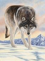 Wolf in Snow Fine-Art Print