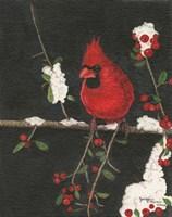 The Cardinal Fine-Art Print