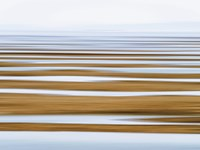Sand Flats in Fog Fine-Art Print