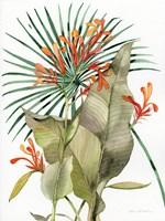 Botanical Flame Lilies Fine-Art Print