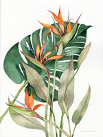 Botanical Birds of Paradise Fine-Art Print