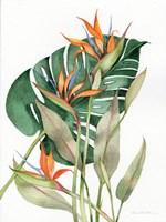 Botanical Birds of Paradise Fine-Art Print