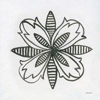 Patterns of the Amazon Icon XVI Fine-Art Print