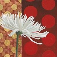Morning Chrysanthemum I Fine-Art Print