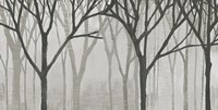 Spring Trees Greystone IV Fine-Art Print