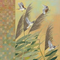 Sparrows and Phragmates August Evening Fine-Art Print