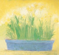 Window Box with Narcissi Fine-Art Print