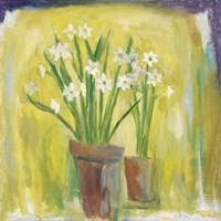 Narcissi Fine-Art Print