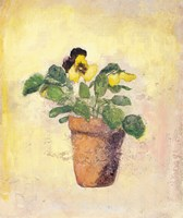 Pansy Giant Fancy Fine-Art Print