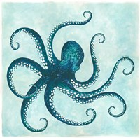 Octopus II Framed Print