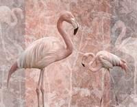 Pink Flamingo Birds Fine-Art Print
