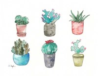 Six Cacti Fine-Art Print