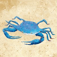 Blue Crab V Neutral Crop Fine-Art Print