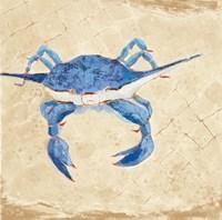 Blue Crab VI Neutral Fine-Art Print