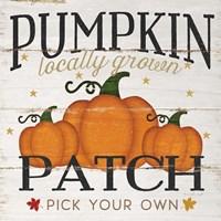 Pumpkin Patch Fine-Art Print