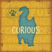 Curious Cat Framed Print