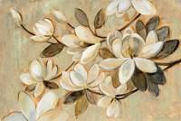 Magnolia Simplicity Fine-Art Print