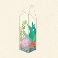 Succulent Terrarium I Fine-Art Print