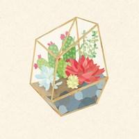 Succulent Terrarium IV Fine-Art Print