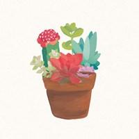 Succulent Terrarium VIII Fine-Art Print