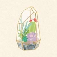 Succulent Terrarium VI Fine-Art Print