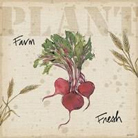 Farmers Feast IV Fine-Art Print