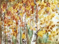 Watercolor Fall Aspens Fine-Art Print
