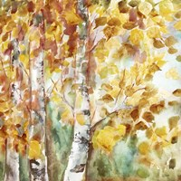 Watercolor Fall Aspens Square Fine-Art Print