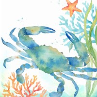 Sea Life Serenade II Fine-Art Print