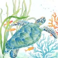 Sea Life Serenade IV Fine-Art Print